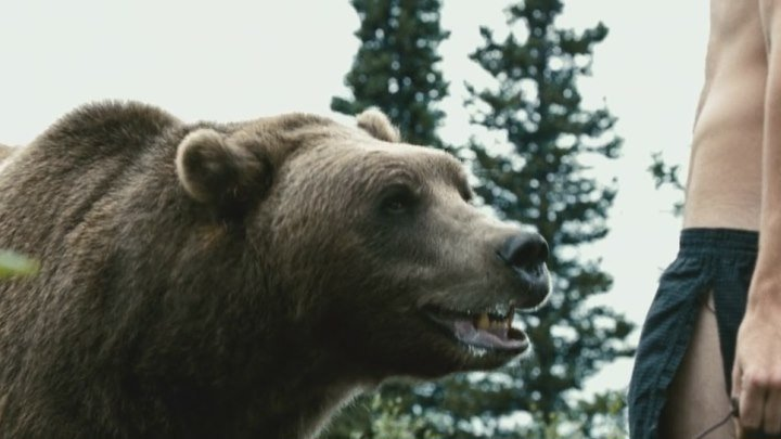 into the wild and grizzly man