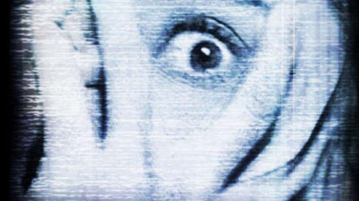 Дипломная работа Ужасы триллер детектив