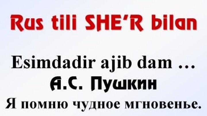 русско-узбекский переводчик программа скачать бесплатно