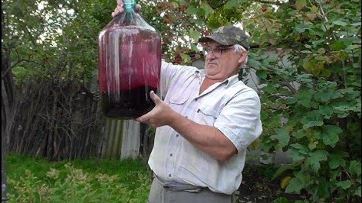 Как сделать мед из винограда - Paket-nn.ru