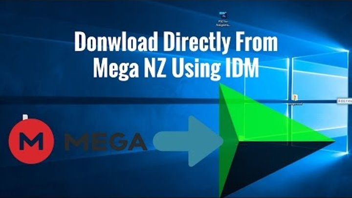 mega using idm