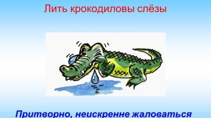 МУЛЬТИК О ВЕСЁЛЫХ ФРАЗЕОЛОГИЗМАХ.