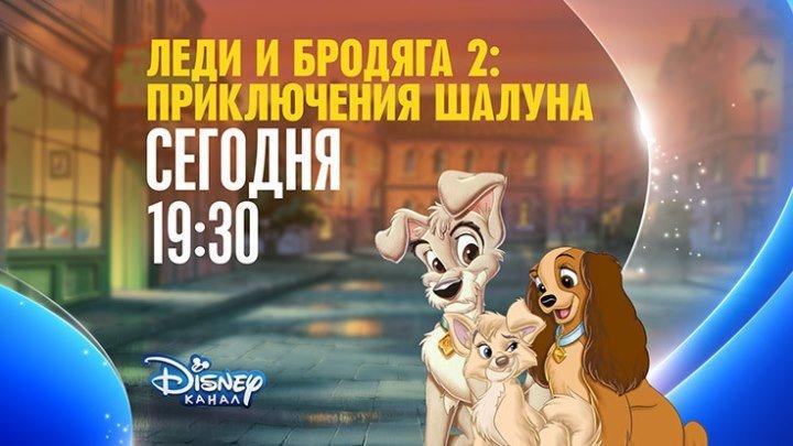 """Леди и Бродяга-2: Приключения Шалуна"" на Канале Disney!"
