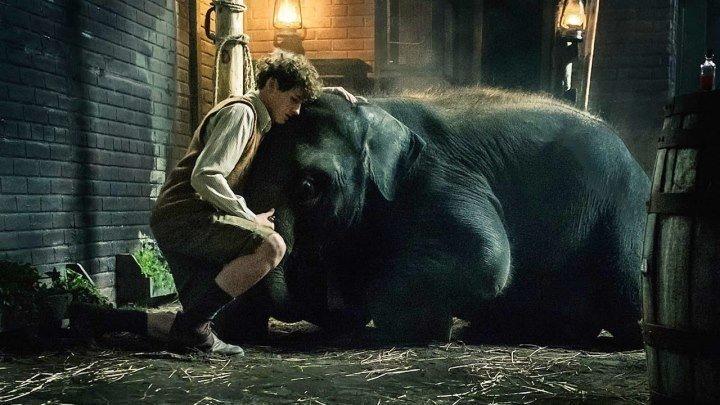 Зоопарк / Zoo (2017). семейный, военный, история