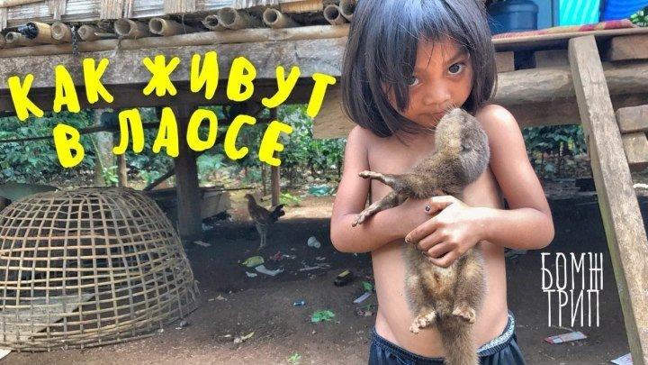 КАК ЖИВУТ ПРОСТЫЕ ЛЮДИ В ЛАОСЕ! Деревня в джунглях, настоящая Азия