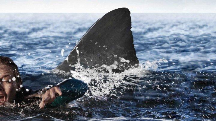 Открытое море: Новые жертвы #триллер #драма #приключения
