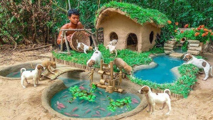 Сказочный городок для спасённых бездомных щенков!
