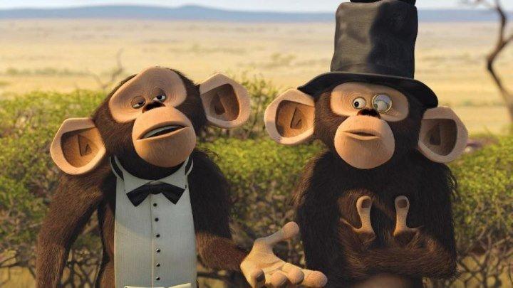 мадагаскар 2 --- обезьяньи парочки серия 3