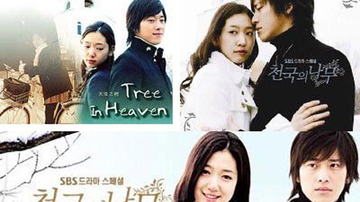 Сериал Райское дерево-10серия