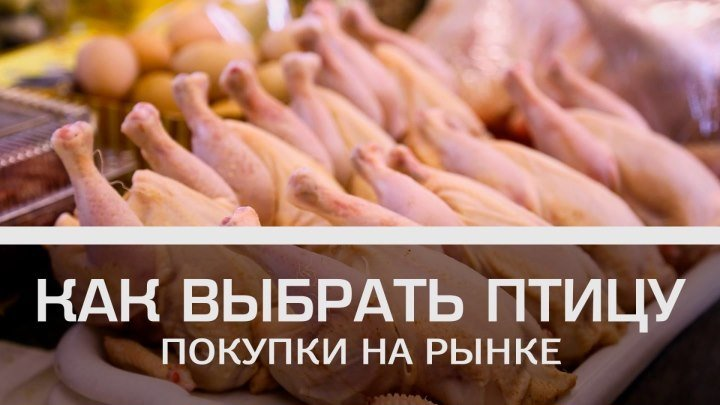 Покупки на рынке: как выбрать птицу [Мужская кулинария]