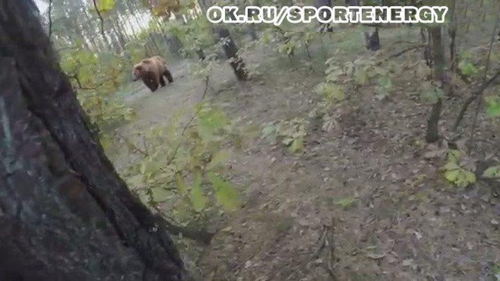 Погоня медведя,слабонервным не смотреть! Ставим класс,чтобы другие тоже увидили)))