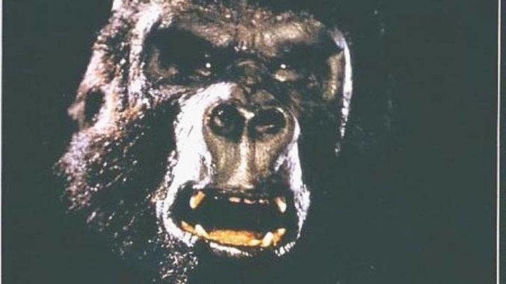 Кинг Конг жив (1986)