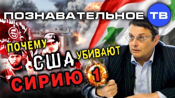 Почему США убивают Сирию 1 (Познавательное ТВ, Евгений Фёдоров)