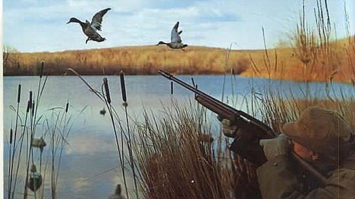 Охота на уток и гусей в 💎 ЯКУТИИ 💎