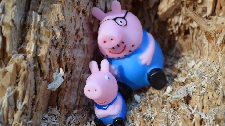Peppa Pig свинка Пеппа и ее семья Мультфильм для детей. Играем в парке