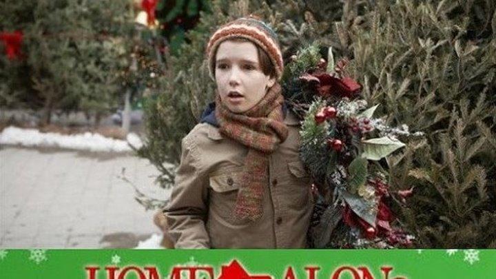 Один дома-5 Рождественское ограбление (2014)