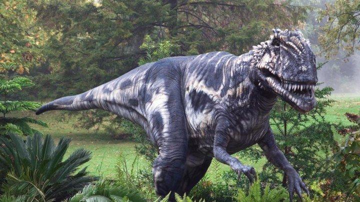 Динозавры / Познавательный фильм для детей.