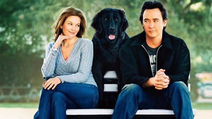 Любовь к собакам обязательна (HD72Ор) • Мелодрама, комедия \ 2ОО5г