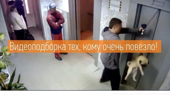 Видеоподборка настоящих везунчиков!
