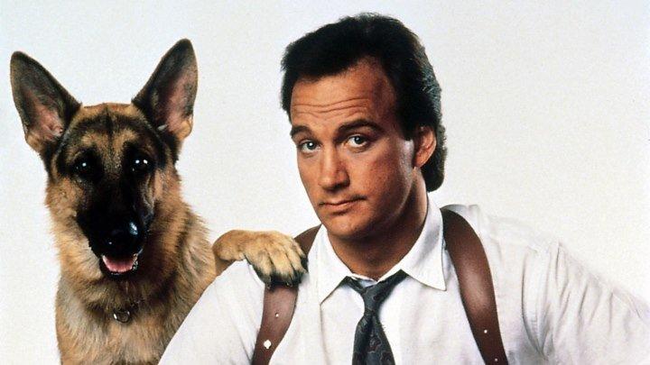 """""""К-9: Собачья работа"""" _ (1989) комедия.Джеймс Белуши.HD"""