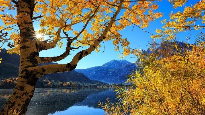 Некрасов Н - Славная осень! (стих)