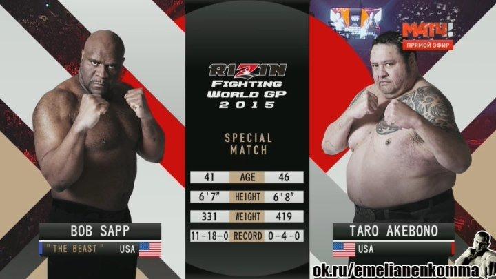 Боб Сапп vs. Таро Акебоно. Rizin FF 2. 31 декабря 2015.