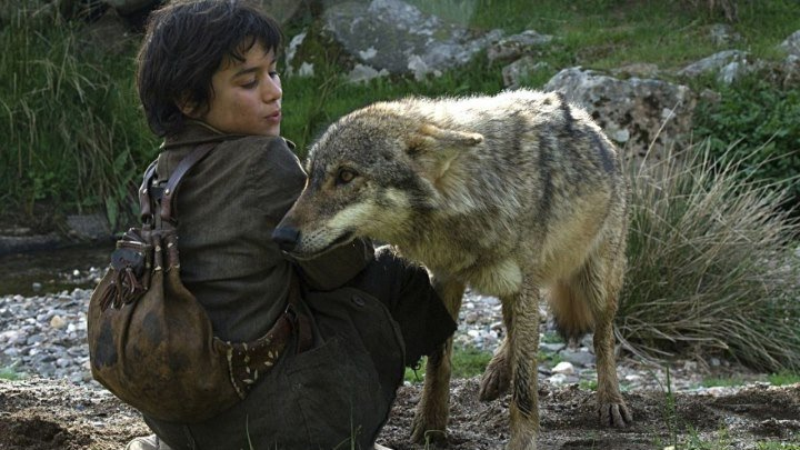 Среди волков Фильм, 2010 Жанр:Драма