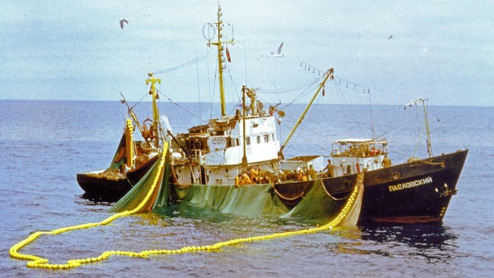 Рыбаки - дважды моряки