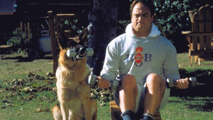К-911: СОБАЧЬЯ РАБОТА 2 1999г. Комедия, криминал.