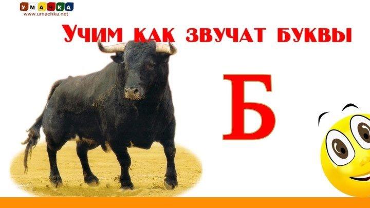 РУССКИЙ АЛФАВИТ. Буква Б. Учим Буквы и Звуки с Кругляшиком.