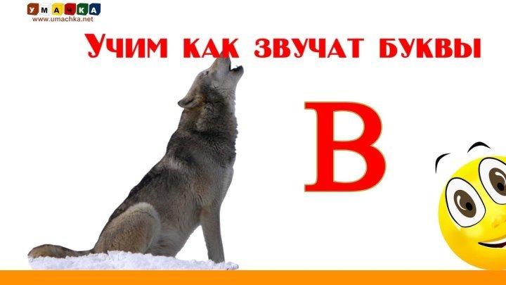 РУССКИЙ АЛФАВИТ. Буква В. Учим Буквы и Звуки с Кругляшиком .