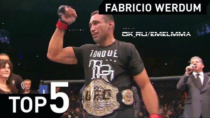 ★ Fabricio Werdum MMA Jiu jitsu TOP 5 ★