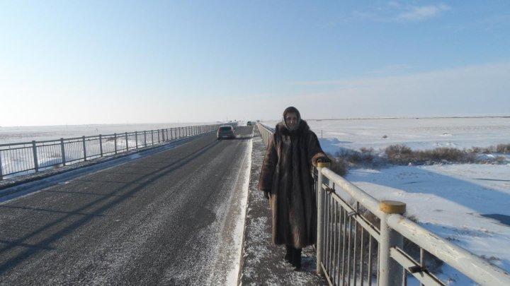 Река - Ишим . / Есильский район .