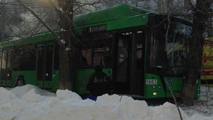 Новый зелёный автобус МАЗ с пассажирами въехал в дерево на Сибирском тракте