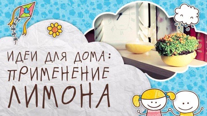 Идеи для дома: применение лимона [Супермамы]