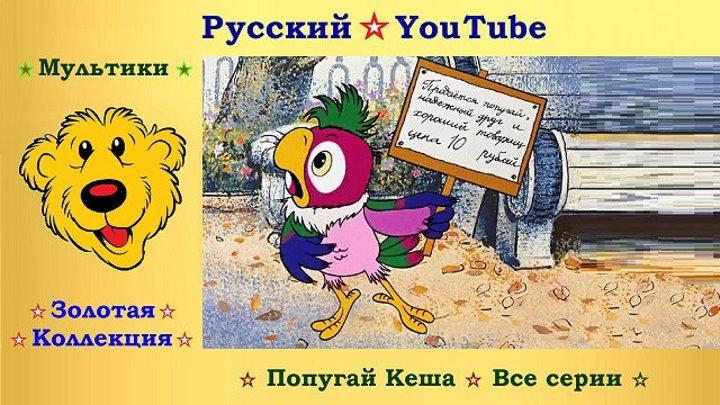 Попугай Кеша ☆ Все серии ⋆ Русский ☆ YouTube ︸☀︸