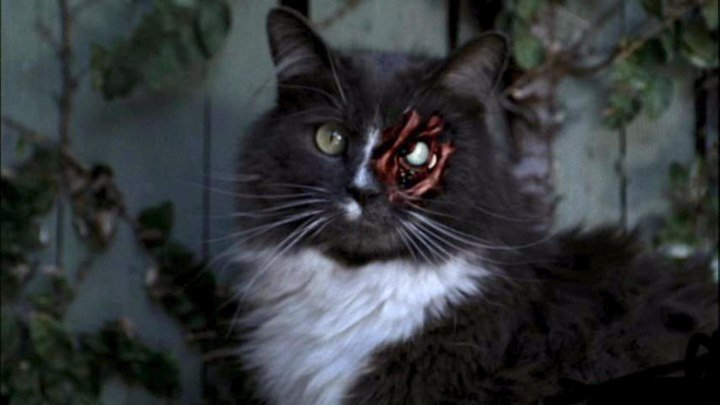 Ночные кошмары и фантастические видения (серия3)
