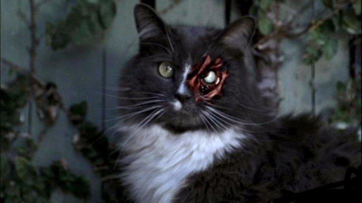 Ночные кошмары и фантастические видения (серия4)