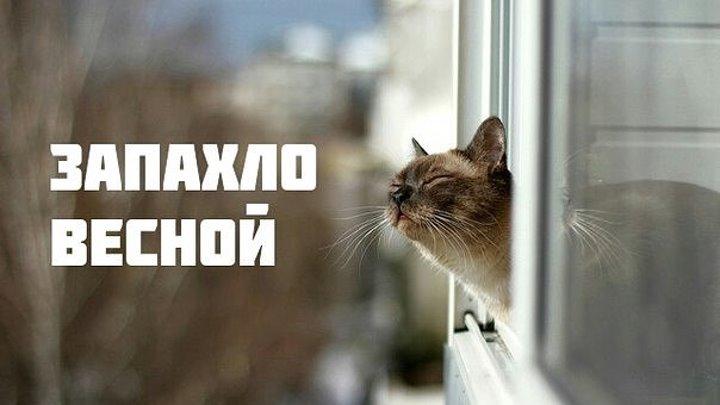 БУТЫРКА - ЗАПАХЛО ВЕСНОЙ