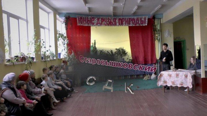 Старовышковский СДК