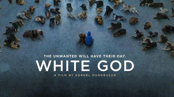 """Белый Бог / Fehér isten"""