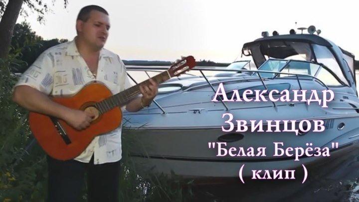 Александр Звинцов - Белая берёза / клип