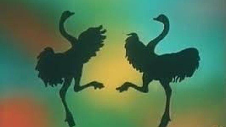 """""""В мире животных."""" ( заставка ) Поль Мориа."""