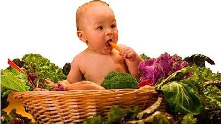 Нужно ли детям есть мясо и яйца