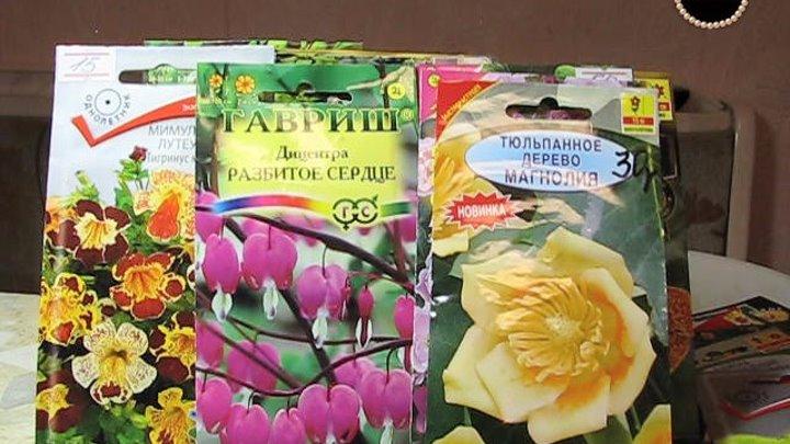 Семена редких цветов и растений