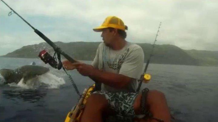 Гигантская акула напала на рыбака. Море крови 18+