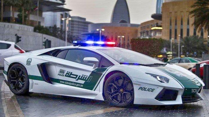 Полиция Майами: Отдел нравов