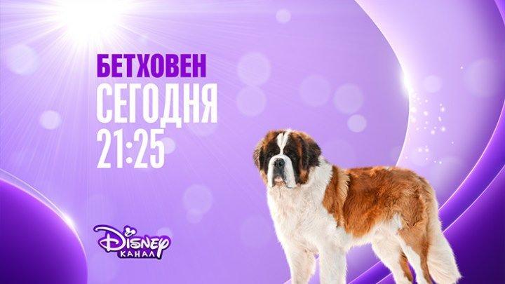 """""""Бетховен-2"""" на Канале Disney!"""