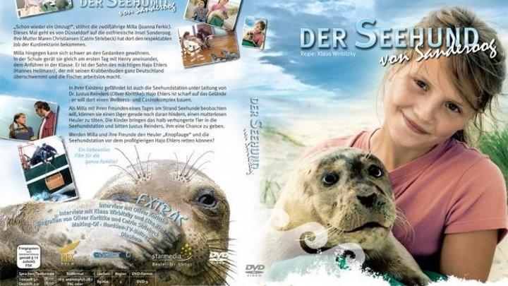 Тюленeнок из Сандеруга