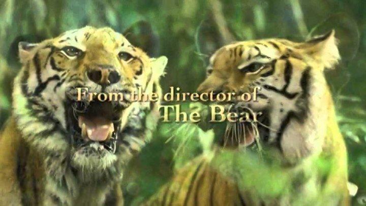 Два брата - драма - приключения - семейный - русский фильм смотреть онлайн 2004